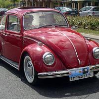Volskwagen 280px volskwagen beetle 5